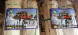 Thưởng thức đường thốt nốt ở Campuchia
