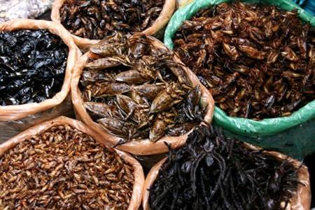 Côn trùng được bày bán tai chợ Skun, Campuchia